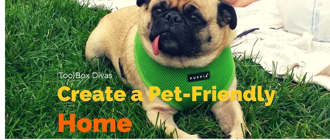 Design: Make a Pet Friendly Home