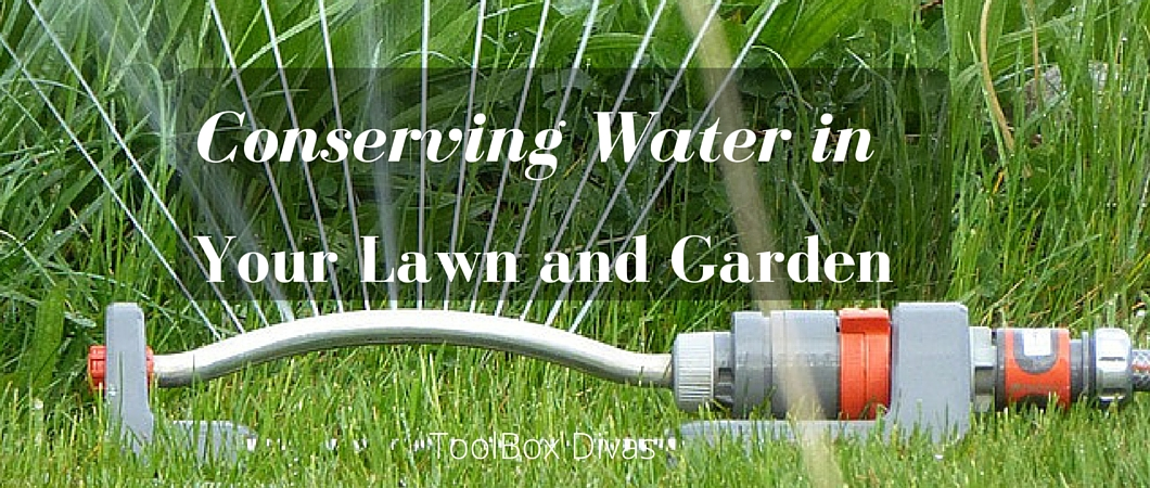 Efficiently Conserving Water in Your Lawn and Garden