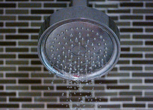 leaky shower head
