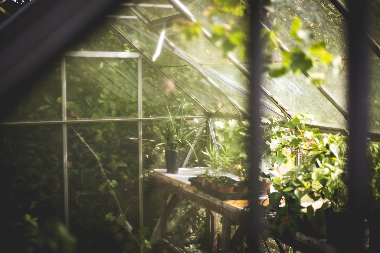 DIY Greenhouses: A Simple And Cheap Design To Keep DIYers Gardening Through Winter