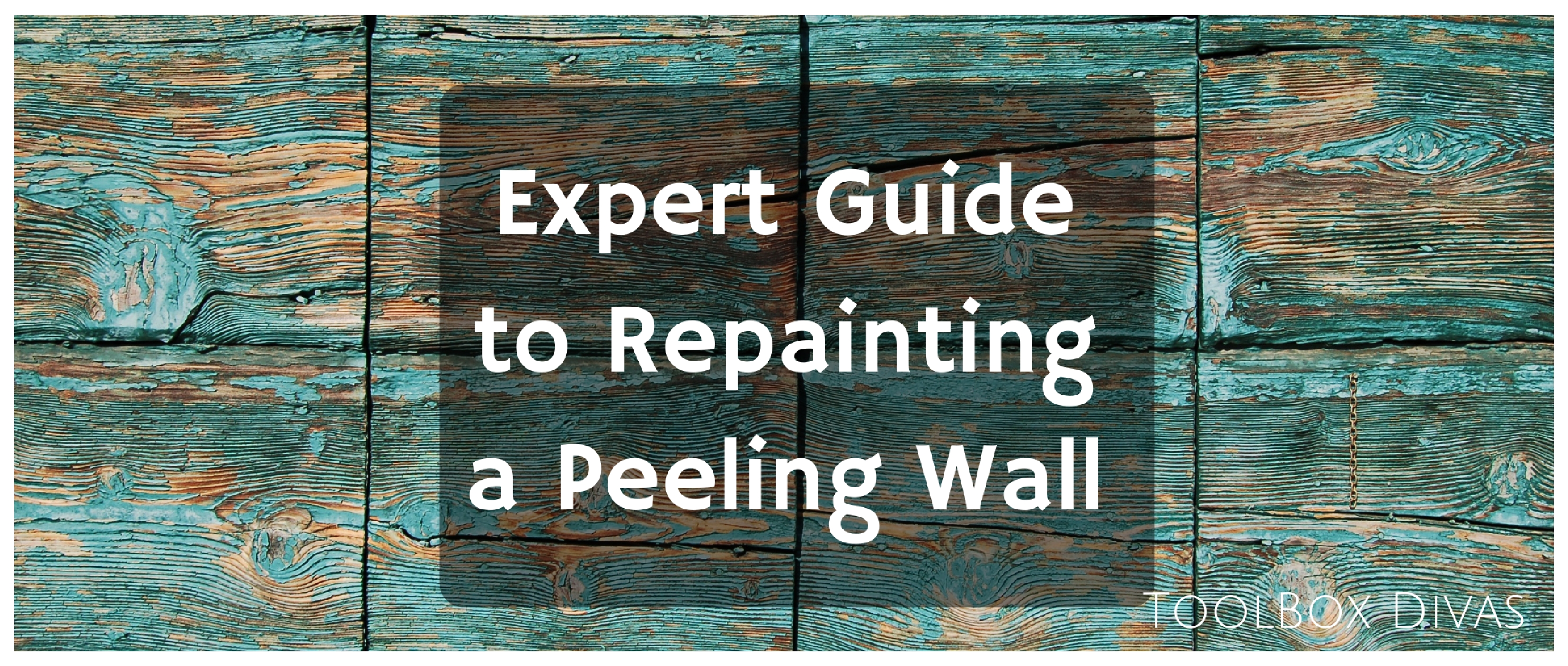 Expert Guide To Repainting A Peeling Wall Toolbox Divas