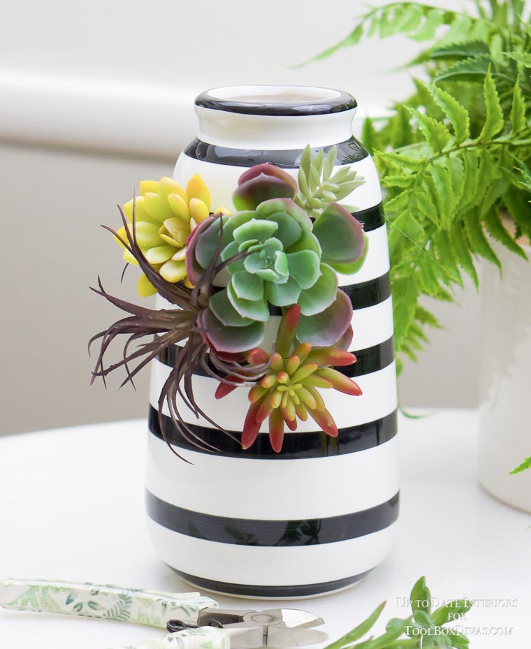 white and black striped vase with succulents on vase