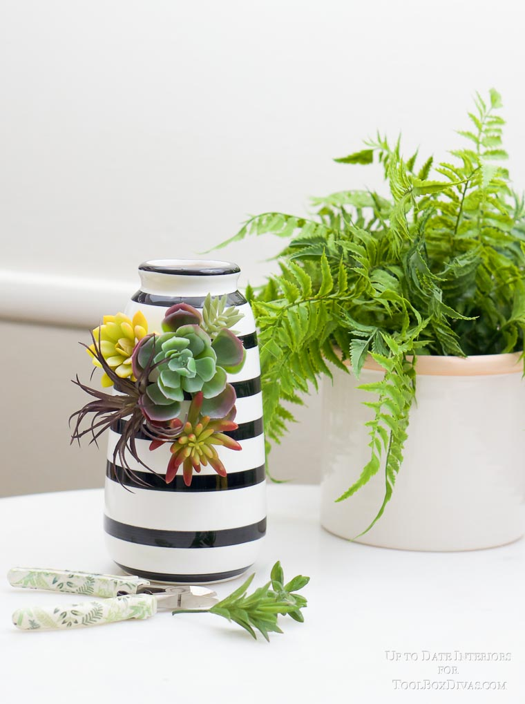 fern in white pot with black and white striped vase and succulents