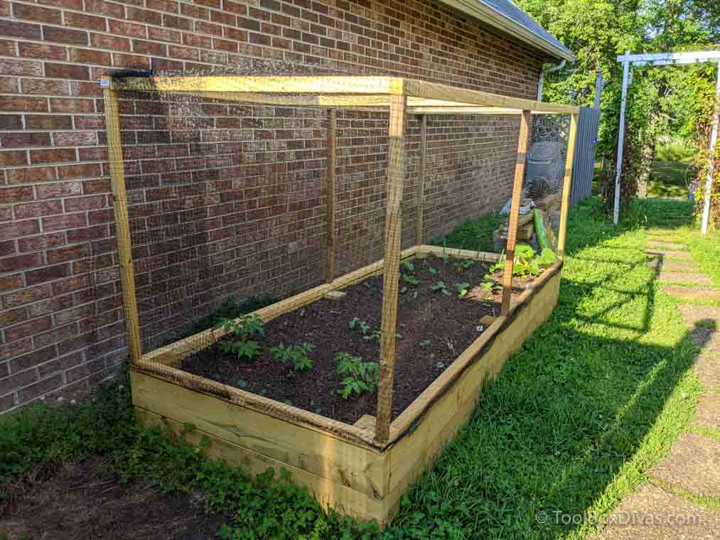 DIY-Raised-Bed-Garden-with-Cover-by-@Toolboxdivas-25-of-42