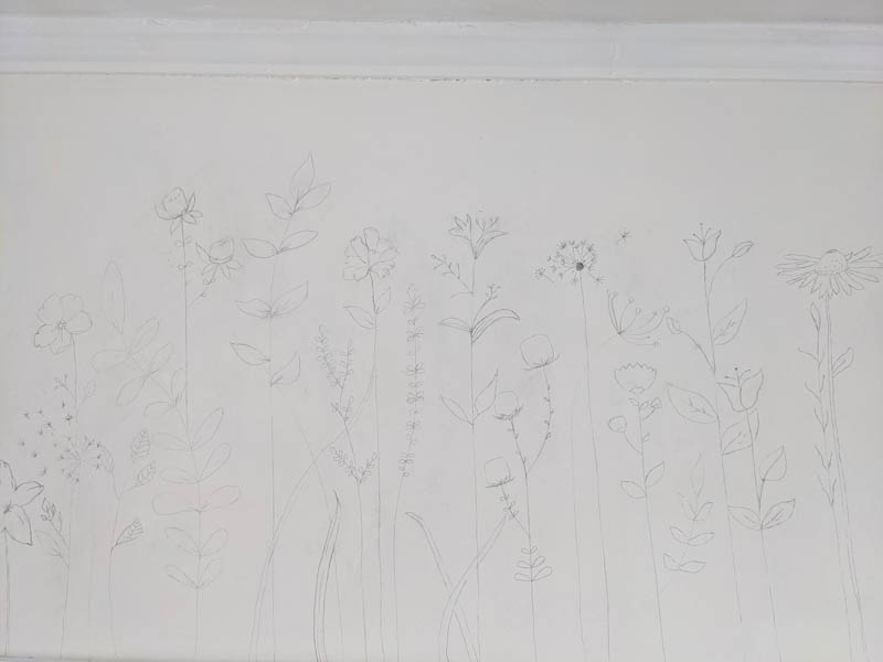 wildflowers drawn with pencil